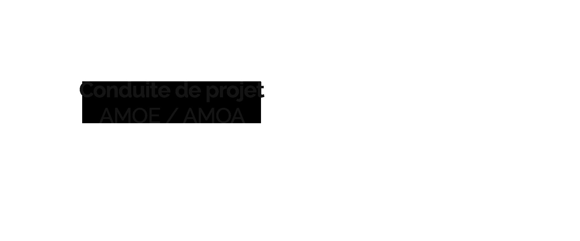 Progys - conduite de projet AMOE / AMOA