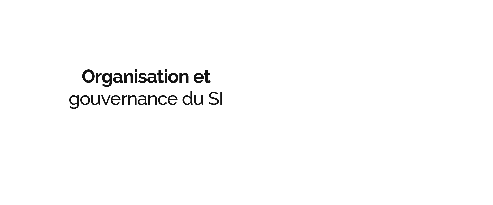 Progys - Organisation et gouvernance du SI