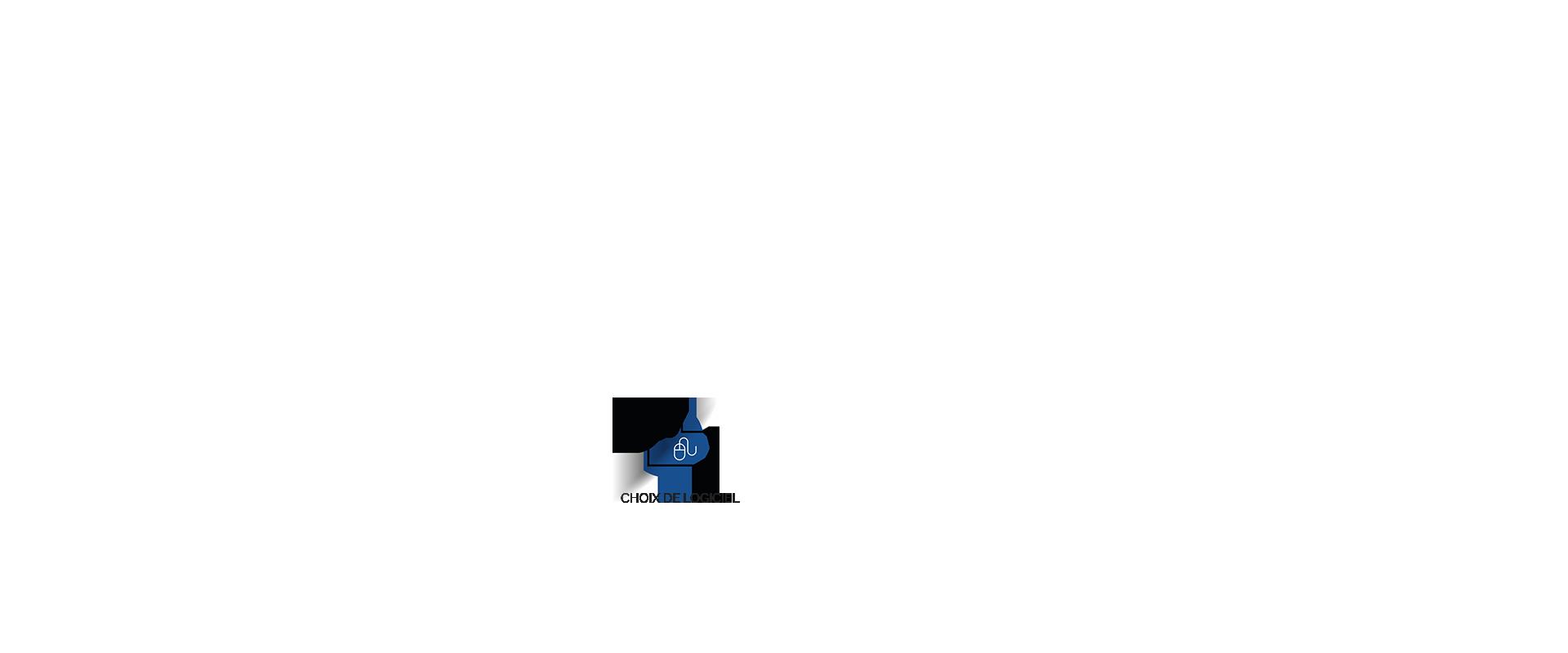 Progys - audit et conseil pour le choix de logiciel erp crm gestion paie comptabilité