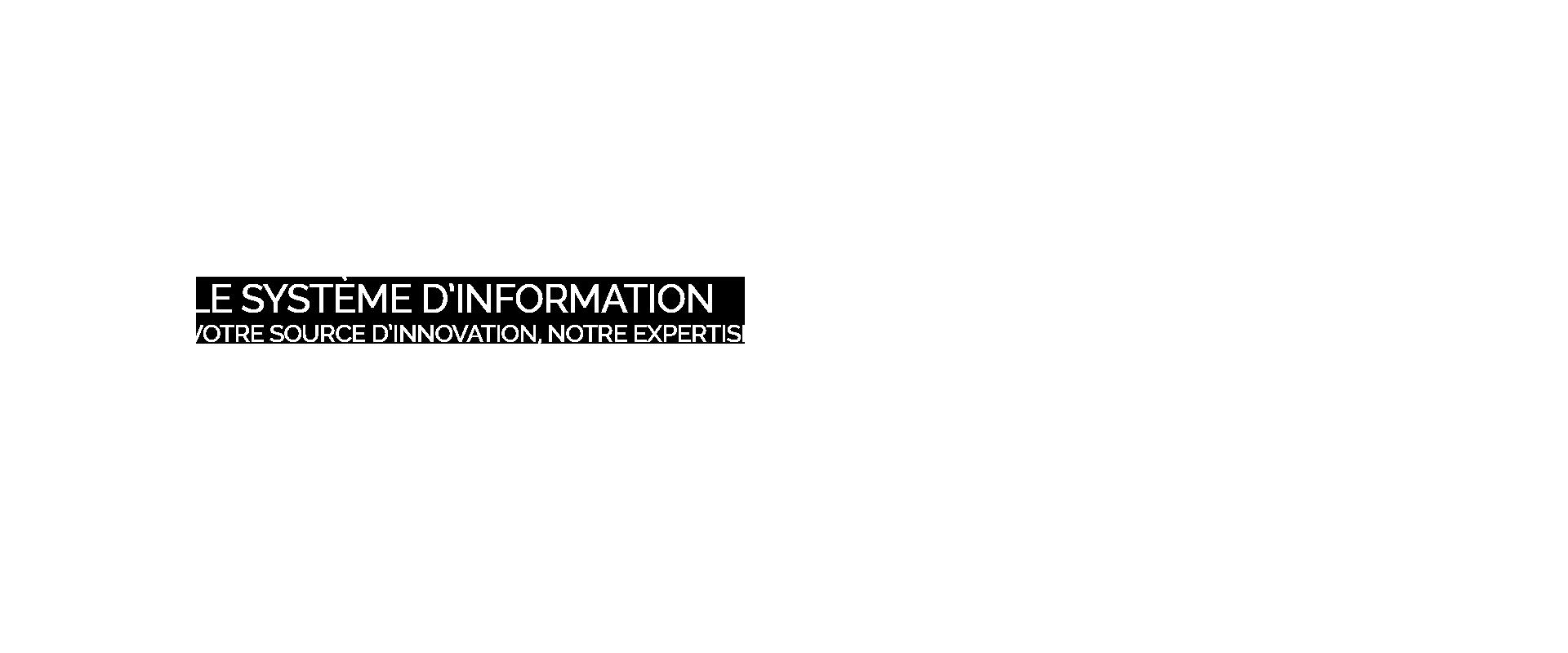 Partenaire du management de votre système d'information